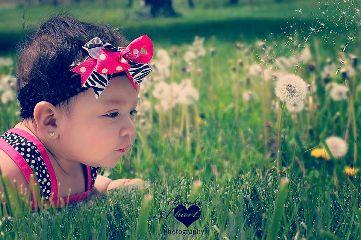 dandelion baby nature photography portrait