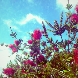 photography summer travel colorful blueskye