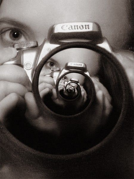 picture in picture photo contest winner