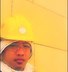yellow hardhot