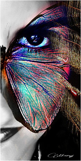 #butterfly #artistcselfie #editstepbystep #look #eyes #emotions #colorful #popart #art