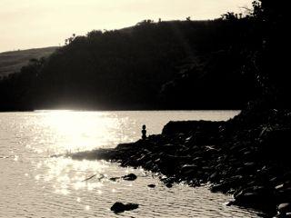 photography blackandwhite nature