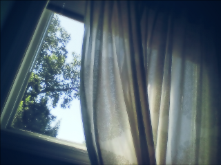 curtains nature vintage cute photography