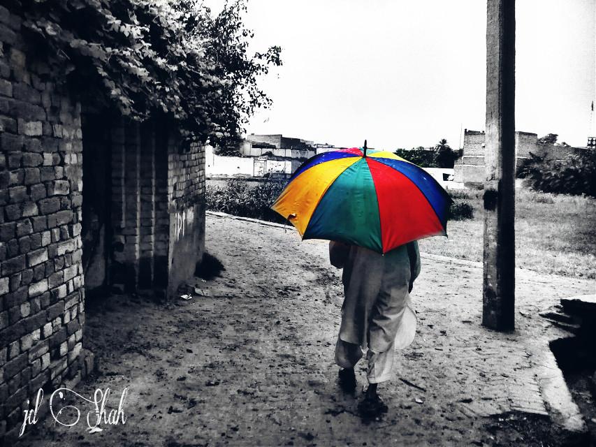 "#photography #nature  #colorsplash #umbrella   #rain .. "" Old man walking in the rain alone with his umbrella """