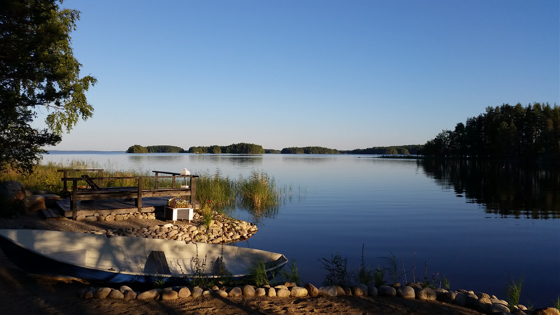 #summer #nature #lake #today #home #blue