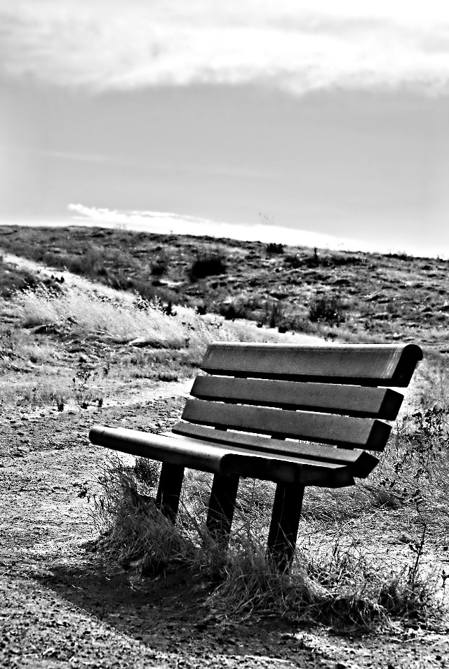 #photography #blackandwhite #bench