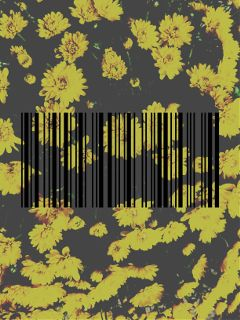 flowers softgrunge tumblr barcode